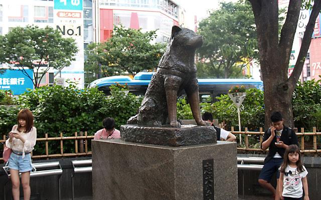nyhet_shibuya_crossing_4_140528 - Kopia